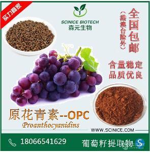 葡萄籽提取物 95% 原花青素 OPC 厂家现货直销 森元优势产品