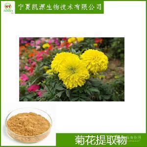菊花提取物 多种规格 比例提取 OEM 代加工