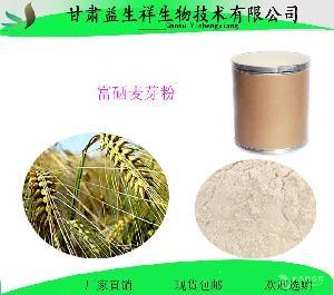 富硒麦芽粉         药食同源产品         量大从优