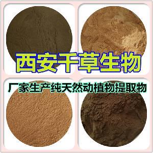 燕麦草提取物燕麦草纯浸膏 厂家定制燕麦草浓缩粉烘焙干燥易溶