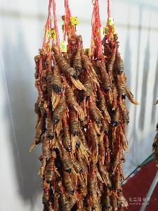 水阳三宝水阳徐立平双心双肠鸭脚包散装腌腊肉