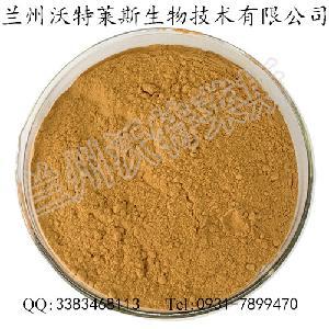 韭菜提取物 10:1 韭菜籽提取精细粉末 专业提取