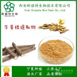 牛蒡根膳食纤维  天然提取物  源头厂家 5-60%纤维