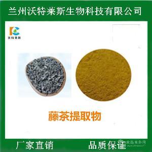 藤茶提取物 藤茶速溶粉 二氢杨梅素98% 多种规格