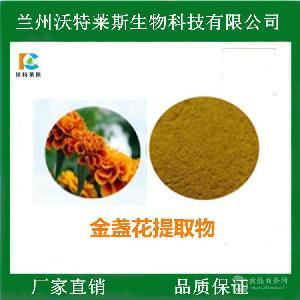 金盏花提取物 万寿菊提取物 叶黄素20% 多种规格