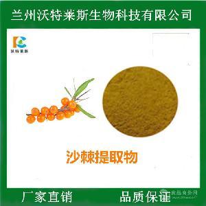 沙棘提取物 比例提取 全水溶 食品原料