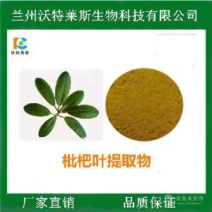枇杷叶提取物 熊果酸25%  喷雾干燥 多种规格