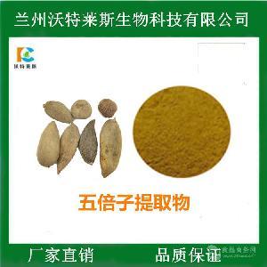 五倍子提取物 比例提取 单宁酸99%  喷雾干燥 多种规格