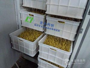 全自动豆芽机手工生产豆芽的终结者 新款全自动豆芽机设备 宏大