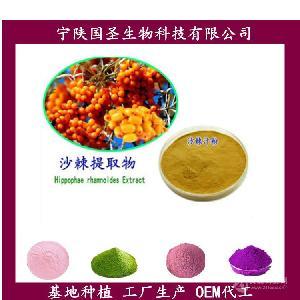 沙棘粉  OEM代加工 原料萃取 SC认证