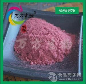 楊梅果粉99% 天然楊梅提取 噴霧干燥楊梅果粉 現貨