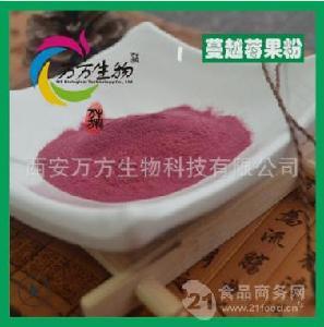 蔓越莓果粉99% 天然蔓越莓果汁粉 食品級  廠家現貨包郵