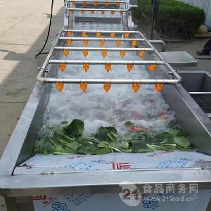 蔬菜清洗风干流水线