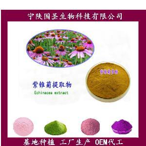 紫雏菊生粉  专业提取  OEM代加工 原料萃取 SC认证
