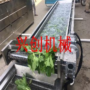野菜清洗机-兴创牌-清洗设备
