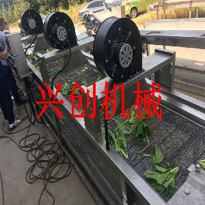 叶菜清洗机-气浪清洗机-果蔬加工设备-净菜加工-潍坊