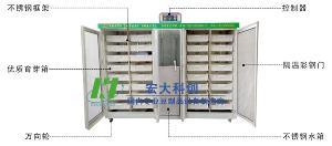 专用于生产花生芽的设备浙江有卖吗|宏大科创自动花生芽机器