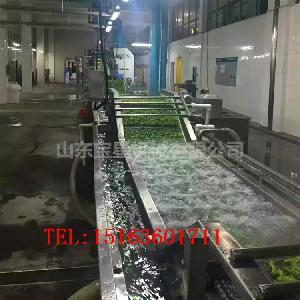速冻毛豆角生产线之毛豆杀青漂烫机