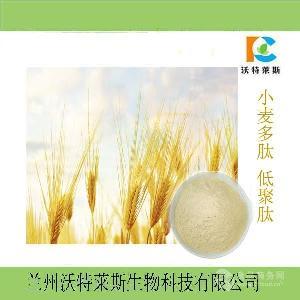 小麦胚芽多肽  麦芽多肽98%  麦芽?#21335;?#36135;
