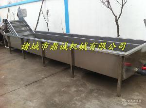 全自动玉米滚杠式清洗机厂家供货