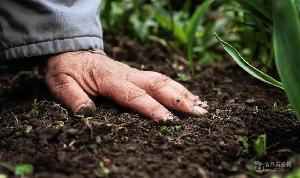 快速檢測土壤重金屬含量