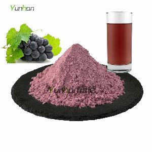 厂家直销速溶葡萄粉 葡萄提取物 水果粉果汁粉冰淇淋粉酵素粉原料