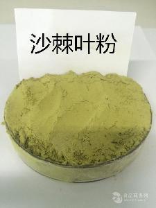 沙棘叶粉 宁夏产地纯粉80目 干叶现磨原粉 生粉 袋泡茶