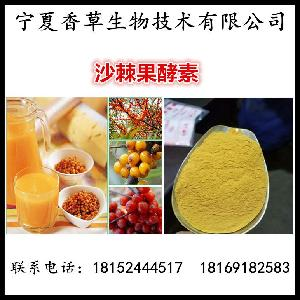 沙棘酵素粉  沙棘果酵素原液 沙棘醋粉 沙棘果发酵浓缩液