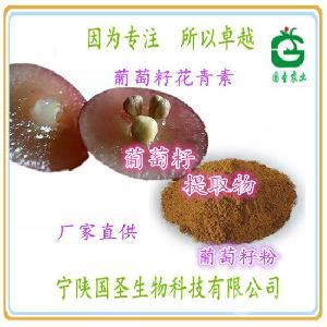 葡萄籽花青素95% 葡萄籽提取物 opc 水溶性好 厂家现货