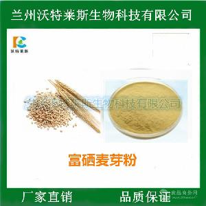 富硒麦芽粉 浓缩 速溶粉 喷雾干燥 食品饮料原料