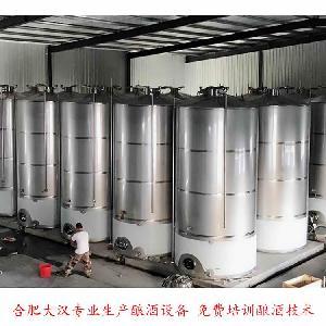 桃酒生产线冬 桃酒生产设备 桃子酒设备