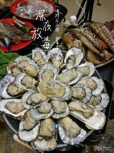 网红生蚝批发价格 鲜活海蛎子供应