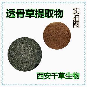 透骨草提取物 生产各类水溶性提取物供应透骨草浓缩浸膏