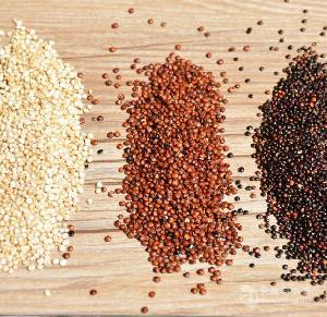 藜麦熟化设备推荐一台藜麦微波熟化设备