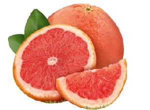 南非进口红西柚囊胞
