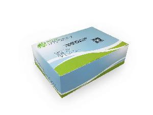 轉基因農產品 ACCg8基因核酸檢測試劑盒(凍干型/恒溫熒光法)