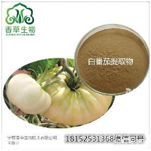 白番茄提取物 白皮番茄浓缩粉 速溶粉 黑番茄速溶粉 80-120目
