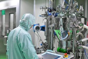 鼠李糖乳杆菌 乳酸菌冻干粉 益生菌菌种 工厂添加剂 100亿/g