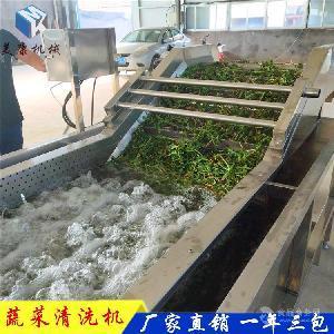 全自动新款水果气泡清洗机 小番茄蔬菜去农药清洗设备价格
