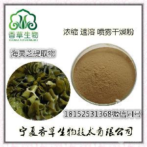海深靈芝提取物30:1 海靈芝多糖 海木耳粉 褐藻膠纖 海藻多糖