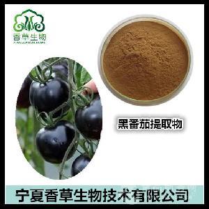 白番茄果粉 白番茄提取物 白番茄速溶粉 番茄素供应 黑番茄浓缩粉