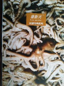 唐新兴章鱼