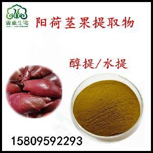 野姜莖果膳食纖維粉65目 陽荷提取物 陽荷芽汁粉 精細研磨粉
