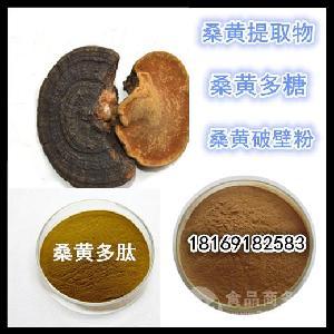 野生桑黄提取物厂家批发桑黄多肽 低聚肽 桑树灵芝粉 桑黄多糖30%