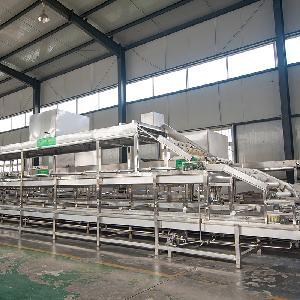 广州自动腐竹生产线 大型双层自动腐竹机设备多少钱