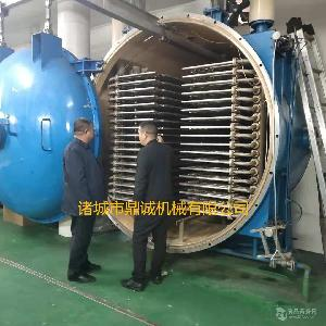 鼎诚专用生产无花果FD真空冷冻干燥设备    山竹真空冻干机
