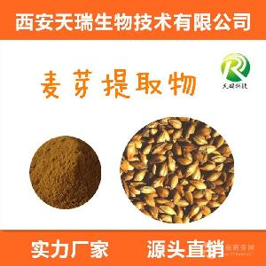 大麥芽粉 五谷粉 炒麥芽粉    食品原料- 天瑞廠家