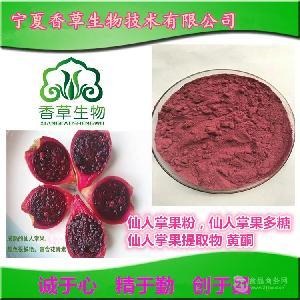 仙人掌果粉供应  仙人掌果浓缩汁厂家 仙巴掌果提取物