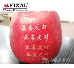 進口水果條碼噴碼機水果激光打標機
