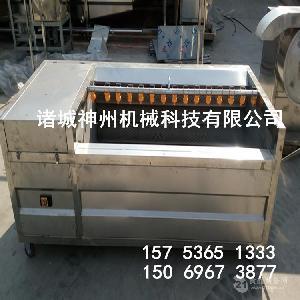 供应毛辊清洗机 土豆 藕清洗设备 可加去皮功能